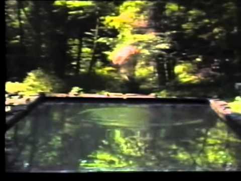 Bill Viola - Reflecting Pool