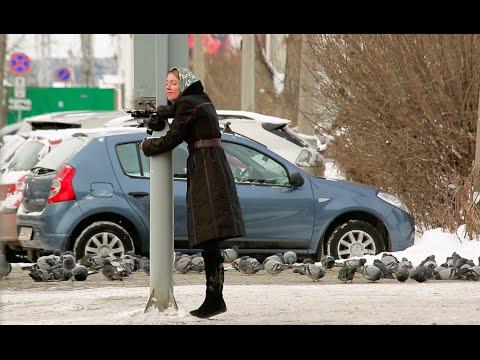 россия, необычное - Видео: В Томске светофор разговаривал с людьми, чтобы поднять им настроение