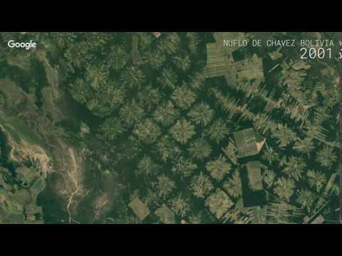 Google Timelapse: Nuflo de Chavez, Bolivia