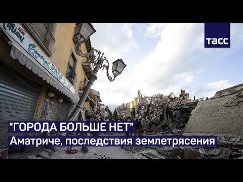 Как котика спасли из-под завалов через 2 недели после землетрясения в Италии - ЧП, животные, душевное