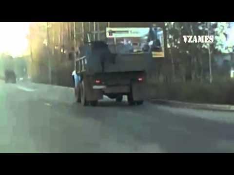 В Нижнем Тагиле теленок на ходу выпрыгнул из кузова грузовика ЗИЛ