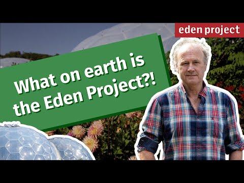 """Как выглядит """"Проект Эдем"""" - самый большой ботанический сад в мире - необычное, картинки"""