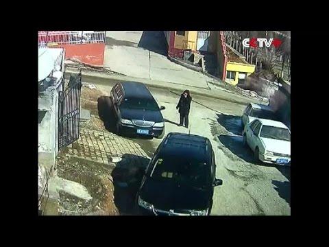 Old Man Fights off Tibetan Mastiff in China