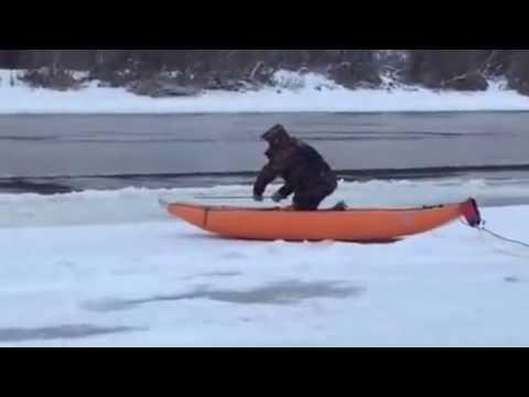 Спасатели вытащили из Оки косулю, застрявшую во льду - россия, картинки, животные