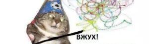 Мем со «вжухающим» котиком-волшебником — наша последняя надежда на лучшую жизнь