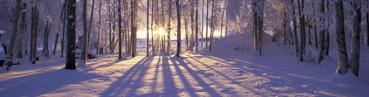 Иностранцы о зиме в России